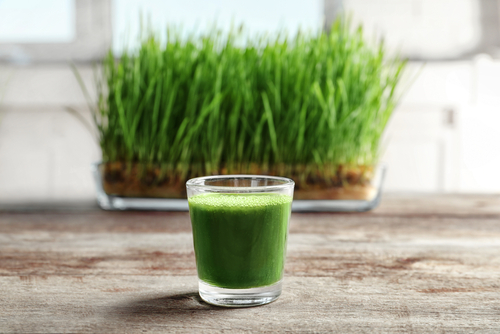 gluten and wheat grass
